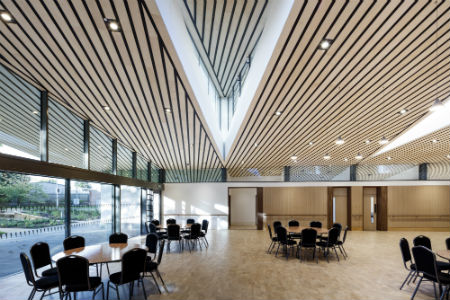 New ceiling system adds wow factor