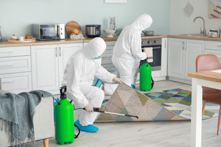 Crucial decontamination steps required for care home safety